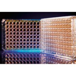 E-Plate cardioECR 48 for the xCELLigence cardioECR 1x6 Plates
